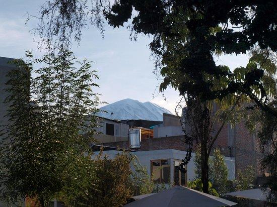 Hotel La Casa de mi Abuela : vue sur le volcan Misti, du Jardin principal.
