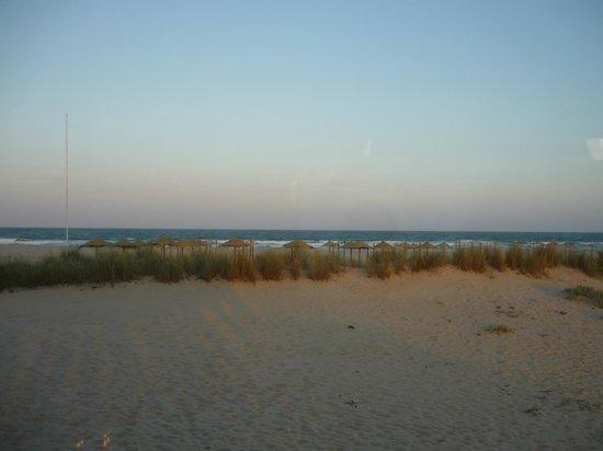 Linda The Beach Bar : The View