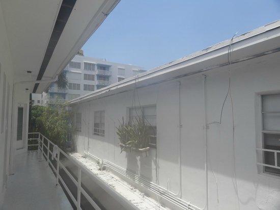 """Richmond Studios: back door view/ """"balcony"""""""