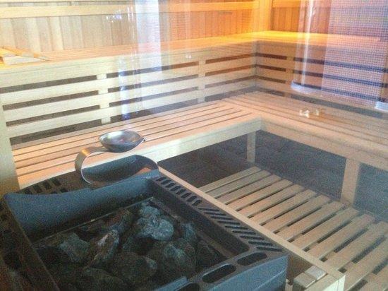 Hotel Premier Aqua : Sauna