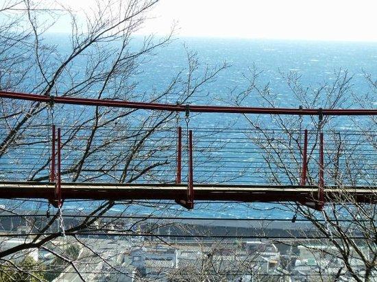 Gotenyama Mountain : 桜の木に包まれた展望スポットになることでしょう。