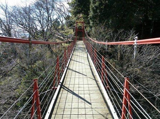 Gotenyama Mountain : 足元は木でできていて、揺れに任せて空気になった気分です。