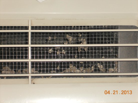 Hampton Inn and Suites-Chesterfield: A photo of the ac/heating unit complete with golfball size dust bunnies.