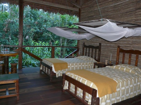 Rain Forest Eco Lodge