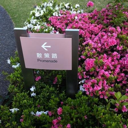 Forest Inn Showakan: ツツジがキレイに咲いてます