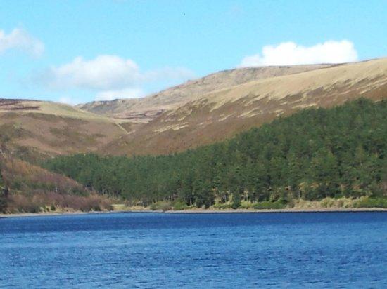 Derwent Dam: Derwent valley