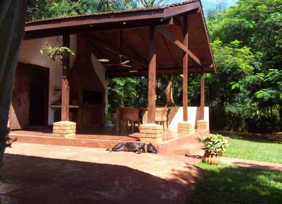 Guest House Puerto Iguazu: The dog - hot day