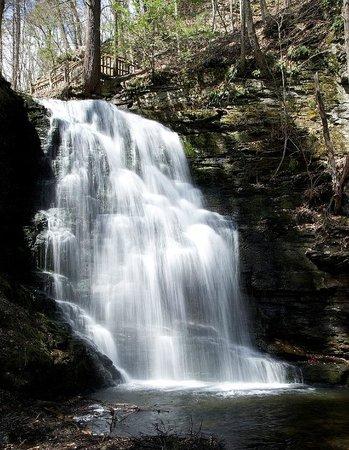 ويندهام فاكيشن ريزورتس شاوني فيليدج: Bushkill Falls Park