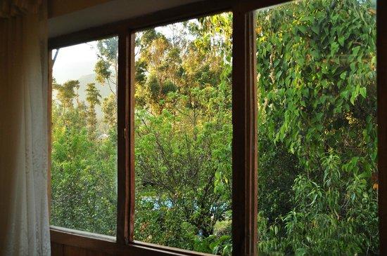 Los Perales Ecolodge : Vista desde la habitacion