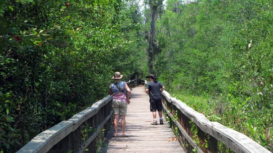 Grand Bay Wildlife Management Area: Wife ans Son on Boardwalk