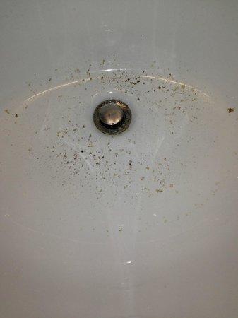 Embassy Suites by Hilton Birmingham: Puke in sink