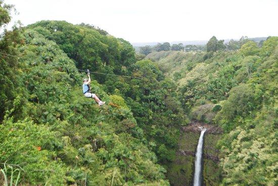 Skyline Eco Adventures - Akaka Falls: Awesome!