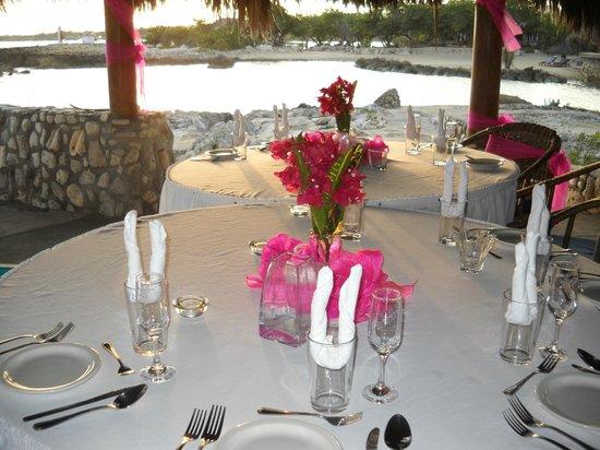 Coral Cove Resort : reception