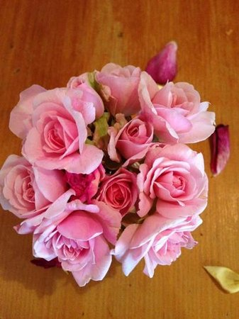 Wagner's Cottages: roses from the garden.