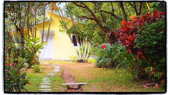 Cabanas Potosi : view of cabana from the main house area.