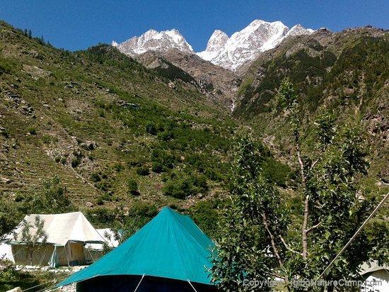 Igloo Nature Camp