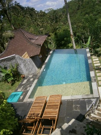 Piscine d bordement picture of dd ubud villa ubud for Piscine a debordement