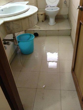 Hotel Amrit Regency: aaFull of water