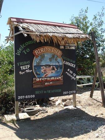 Bird's Isle: We were happy to find our destination.