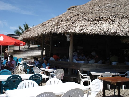 Bird's Isle: The view from the sunny tables.