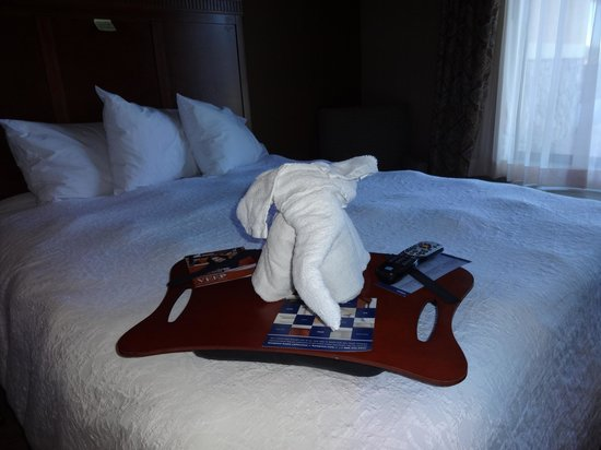 Hampton Inn & Suites Show Low-Pinetop: A towel animal left for our arrival!