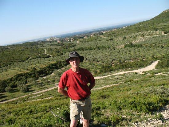 Provence Cultural Tours Day Tours : hiking Les Alpilles