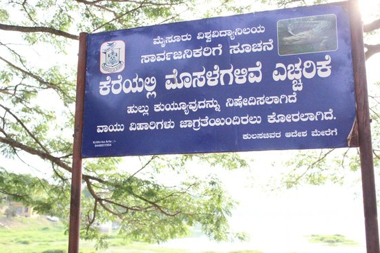 Kukkarahalli Lake: Beware of Crocodiles in Lake