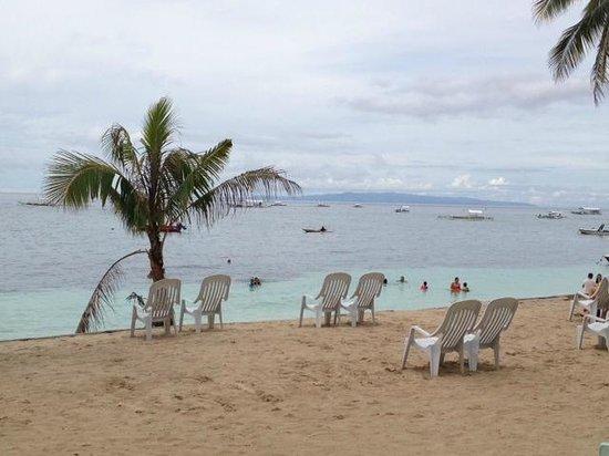 Bohol Divers Resort: The Beach Front