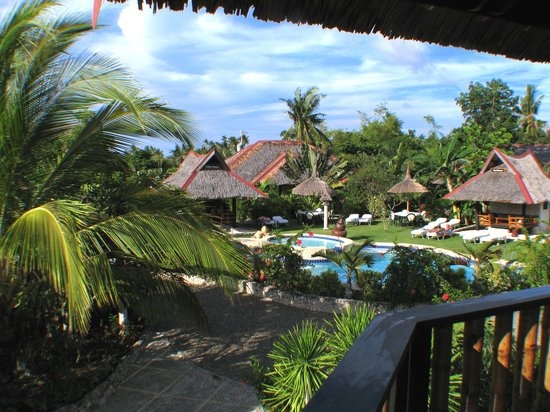 Dolphin-House Resort-SPA-Diving