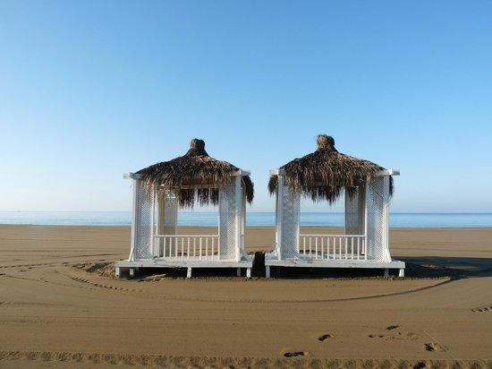 Jacaranda Club & Resort: Пляж ранним утром