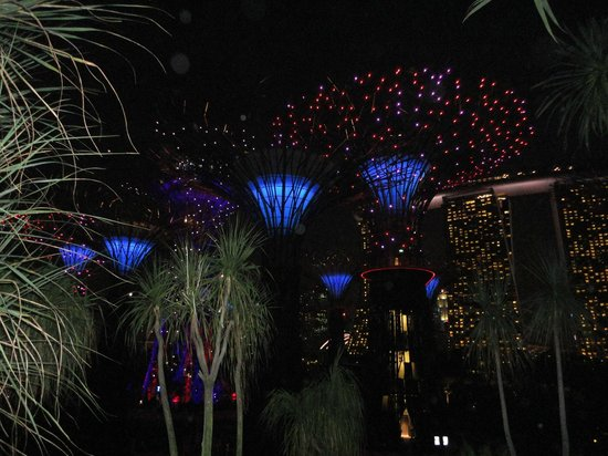 Gardens by the Bay: tree grove show