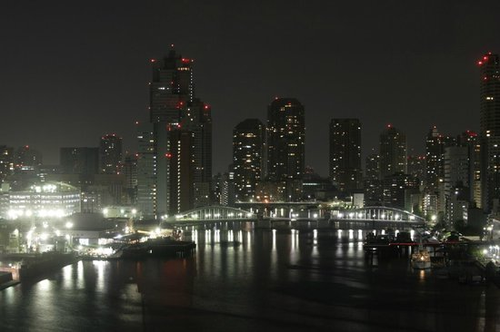 InterContinental Hotel Tokyo Bay: view from the room