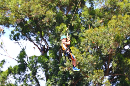 Northshore Zipline Co.: Fun for the whole family