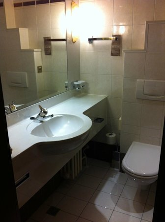 Panorama Hotel Prague : bagno