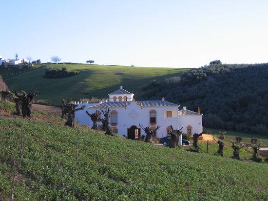 Hacienda la Morena : Fris, strak, origineel en zeer fraai