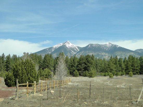 San Francisco Peaks: Dramatic peaks in the distance