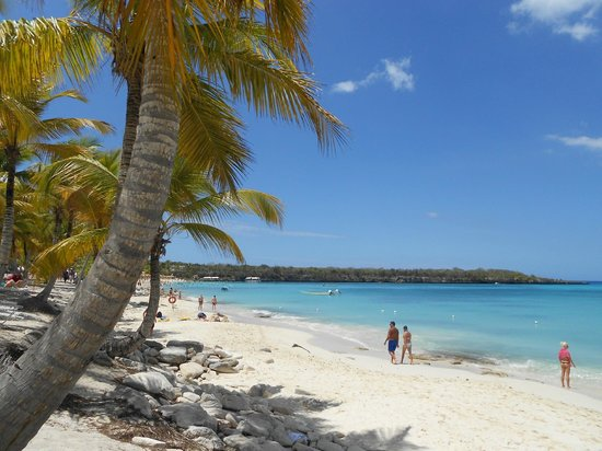 Catalina Island Snorkel Excursion From Punta Cana Reviews