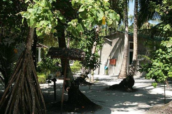 Filitheyo Island Resort: Umgebung 134