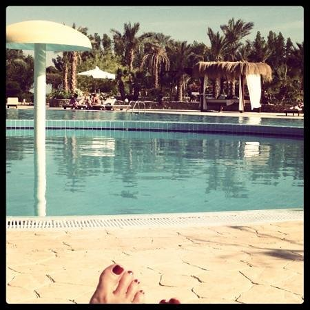 Dessole Holiday Taba Resort: Бассейн