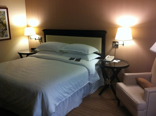 Sheraton Raleigh Hotel: Guest room