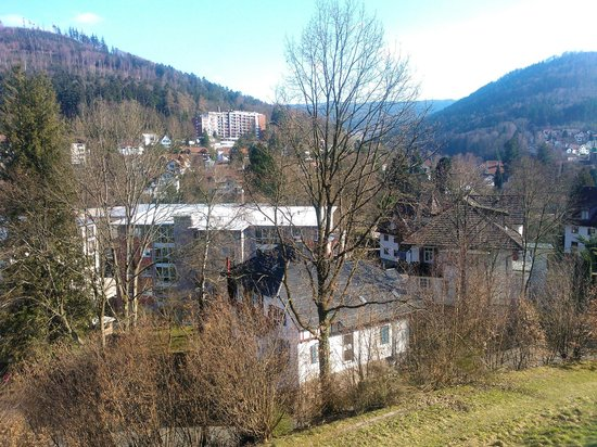 Schwarzwald Panorama: Ausblick Pool