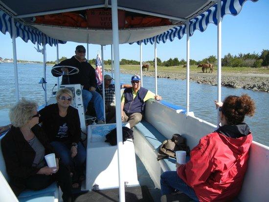 Waterbug Tours: Wonderful Tour - I recommend it!