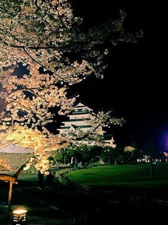 Tsuruga Castle: 夜桜と鶴ヶ城