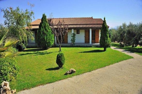 Villas Lefkothea: 4 bedroom villa