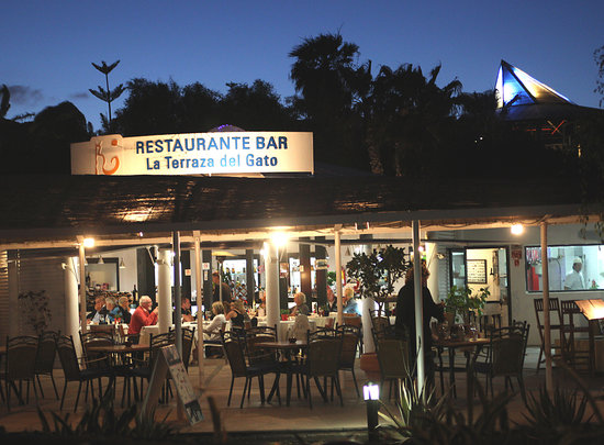 Restaurante Terraza del Gato : Terraza del gato