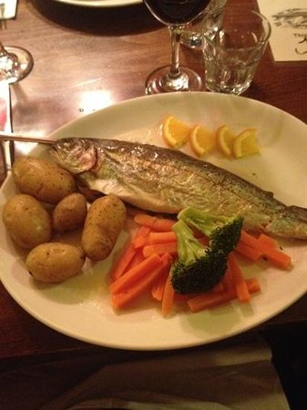 Fishermans Cot: trout