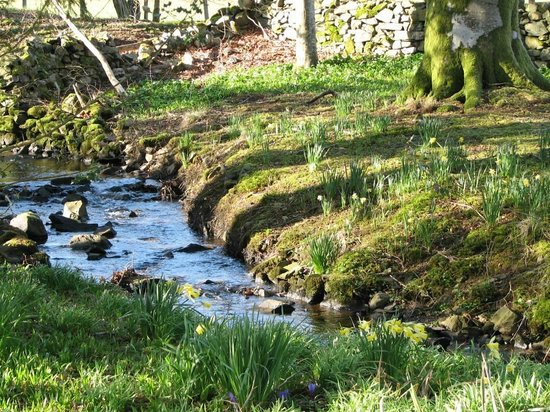 Overwater Hall: A quiet corner of the peaceful garden