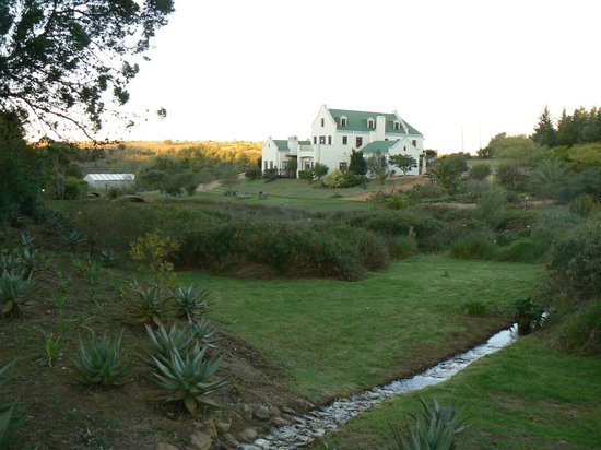 Peace Valley Guesthouse: View from the corner of the garden