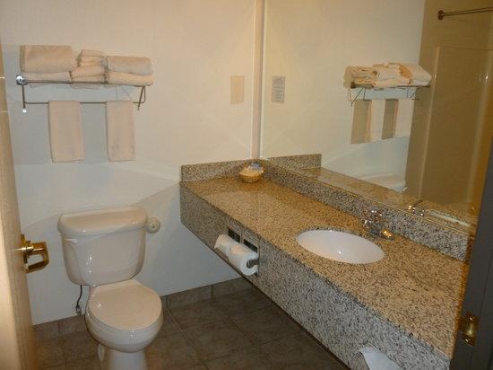 White Oak Inn & Suites: Bathroom
