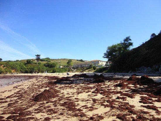 La Farola del Mar: Der schöne Strand - leider voller Algen.